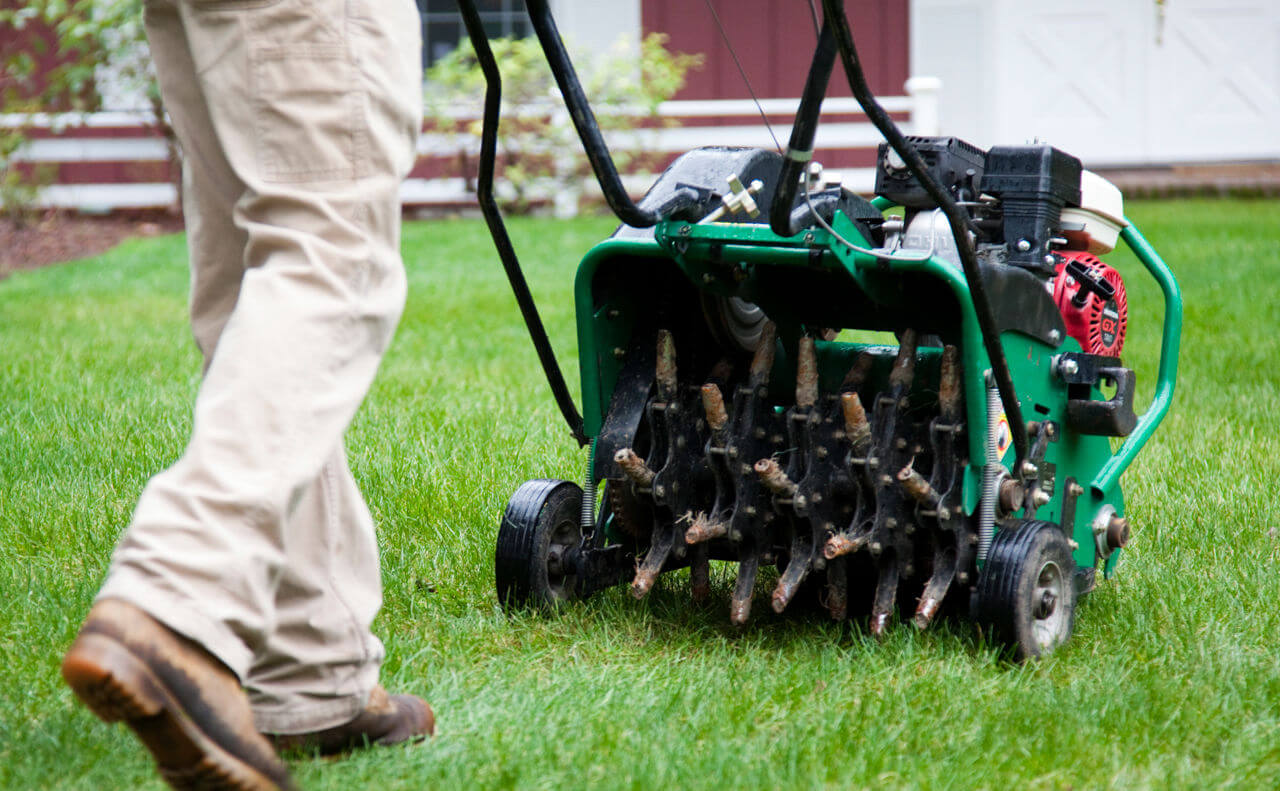 Grass Aerator Top 10 Best Manual Lawn Aerators Review May 2019 A Guide