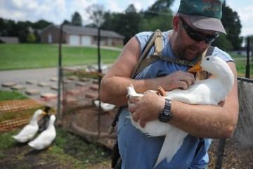 Iraq War Veteran and His Ducks
