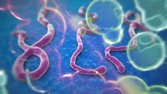 US has faced 68 Ebola scares in the last three weeks