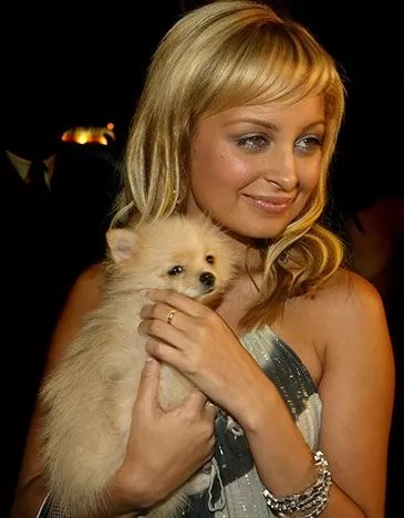 12 Celebrities With Pomeranians