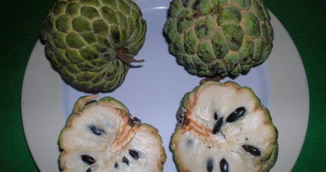 Sugar Apple or Noi-na