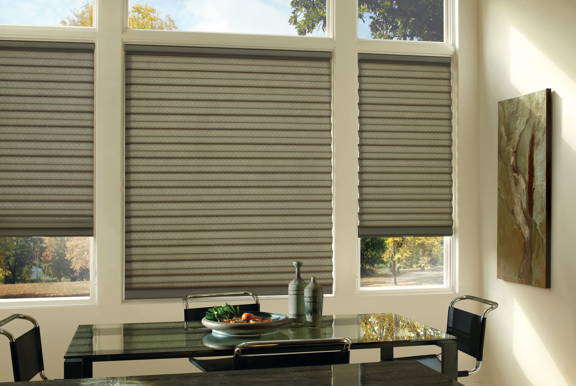 E Screen Blinds Window Treatments By Design Interiors