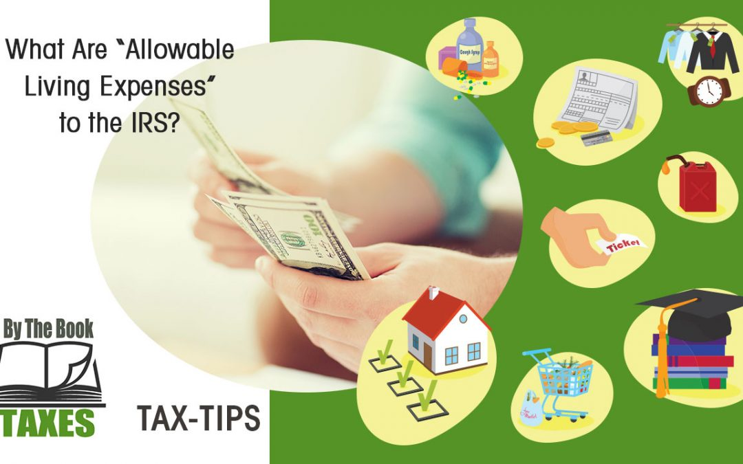 What Are \u201cAllowable Living Expenses\u201d to the IRS? - By The Book Taxes