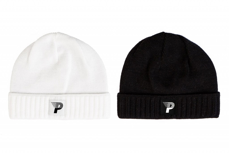 Polar 16