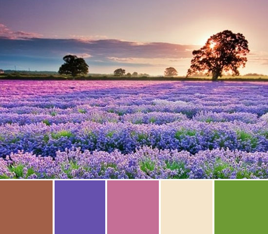 today's color inspiration 26