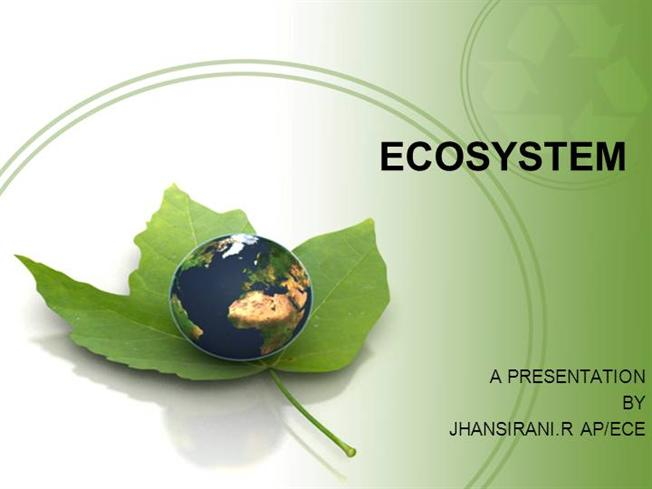 ECOSYSTEMauthorSTREAM