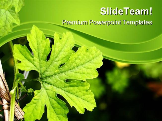 Green Plant Nature Powerpoint Themes And Powerpoint Slides Ppt Lay