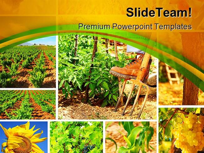 Harvest Concept Collage Agriculture Powerpoint Templates And Power