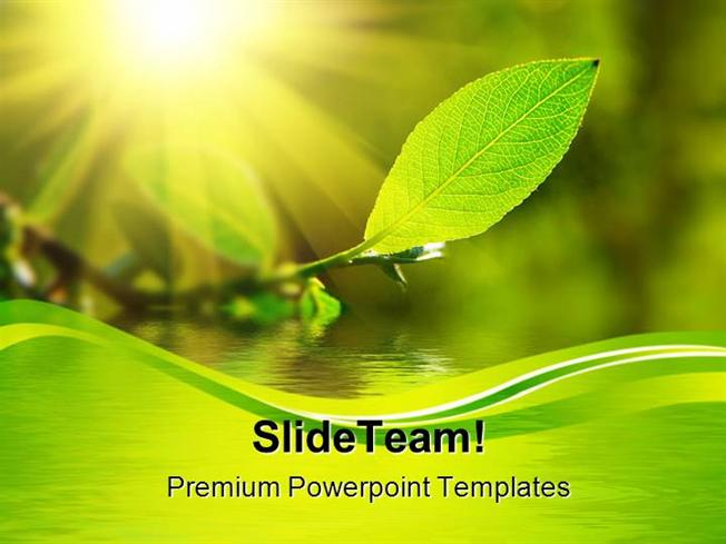 Leaf Sun Water Nature Powerpoint Themes And Powerpoint Slides Ppt