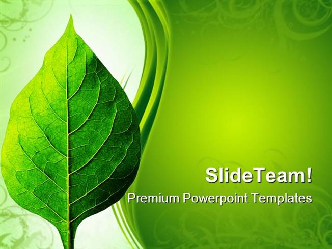 Perfect Leaf Nature Powerpoint Themes And Powerpoint Slides Ppt De