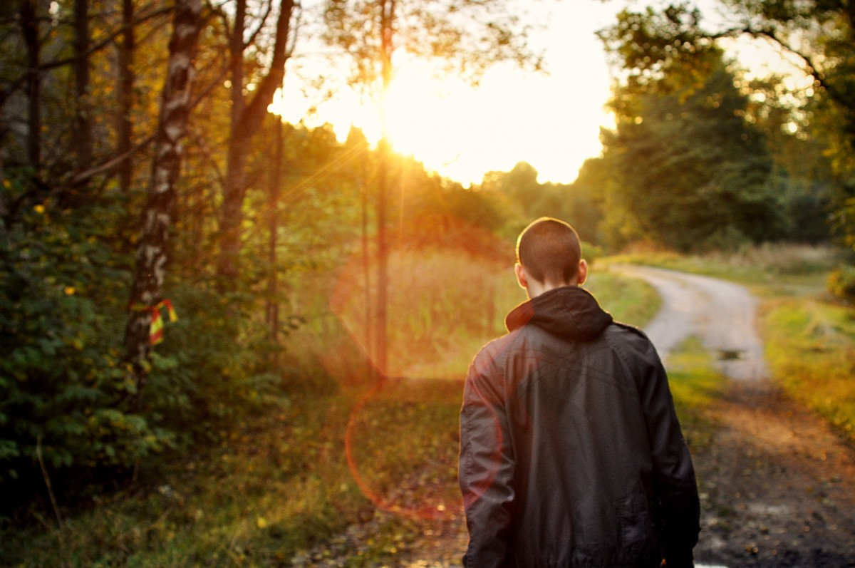 Fall Landscape Wallpaper Fotos Gratis Hombre Naturaleza Para Caminar Puesta De