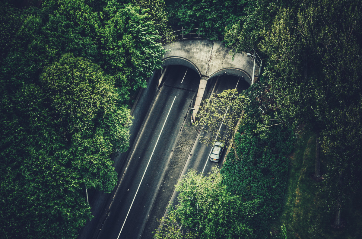 Car Service Wallpaper Free Images Tree Forest Road Bridge Car Tunnel