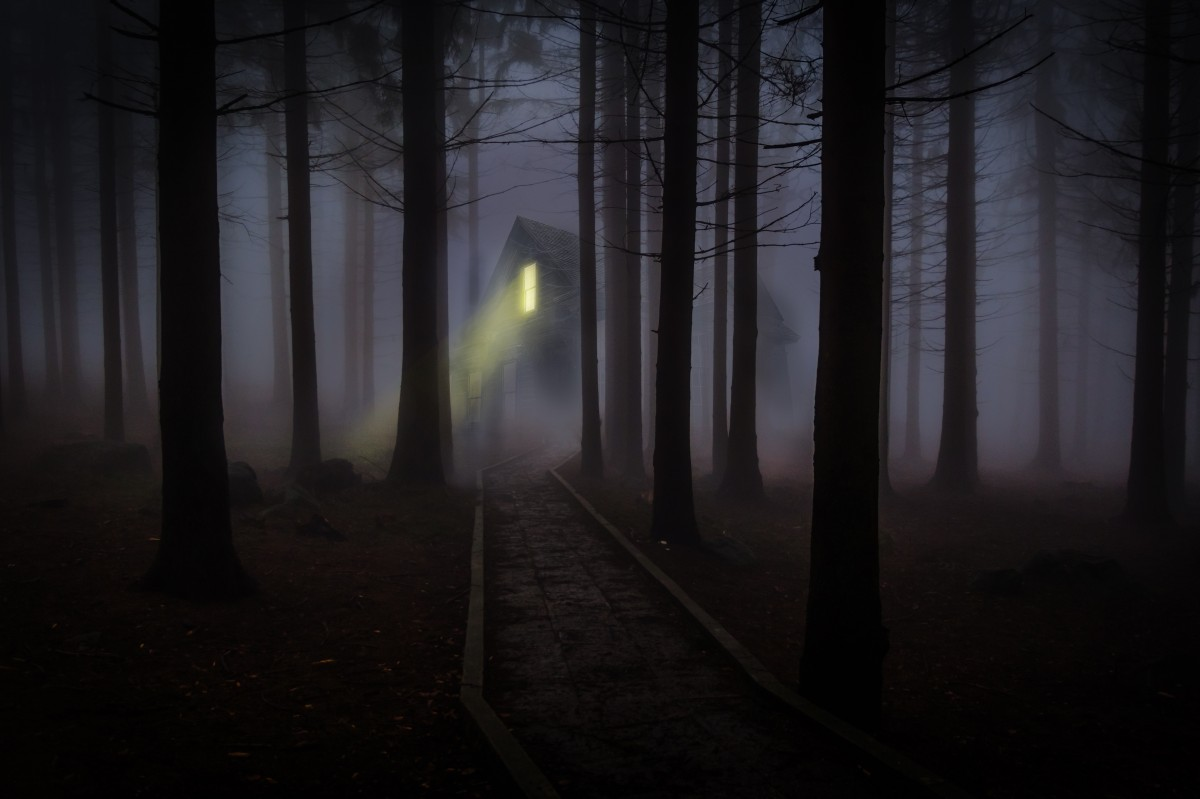 Spooky Fall Wallpaper Free Images Forest Fog Mist Night House Sunlight