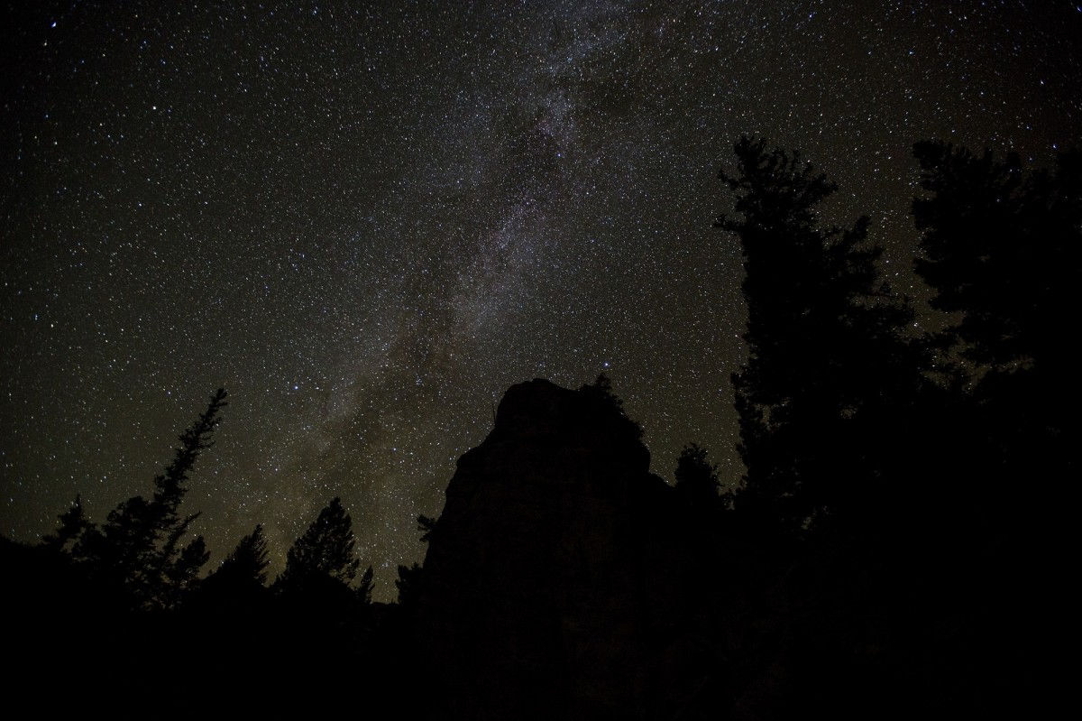 Starry Fall Night Wallpaper Free Images Landscape Wilderness Cactus Sky Night
