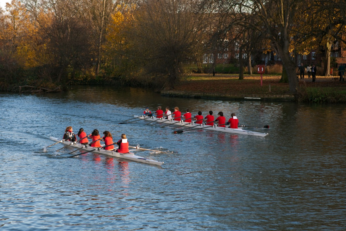 Free Images Paddle Vehicle Activity Rowing Boat Team