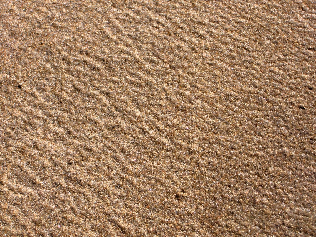 Free Images Landscape Sand Wood Floor Coastal