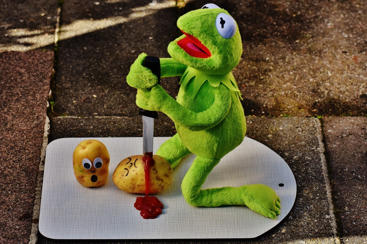 Potato Wallpaper Cute Free Images Cute Green Frog Yellow Knife Sit