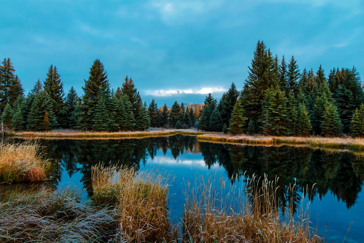 Free Fall Forest Wallpaper Free Images Landscape Lake Pond Reflection Lagoon