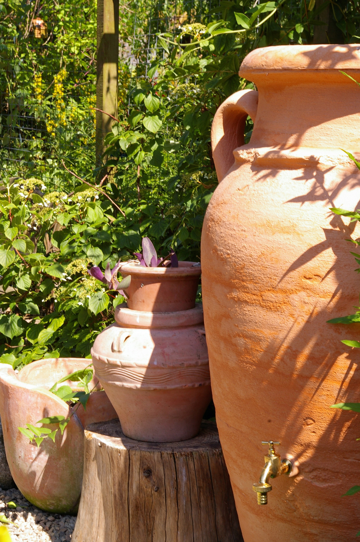 Gartendeko Mediterran Free Images : Tree, Wood, Sunlight, Leaf, Flower, Summer, Green, Mediterranean, Produce, Autumn, Backyard, Rest, Stone Wall, Terracotta, Deco, Flowers, Carving, Yard, Light And Shadow, Gartendeko, Garden Decoration, Garden Design, Amphora, Shadow