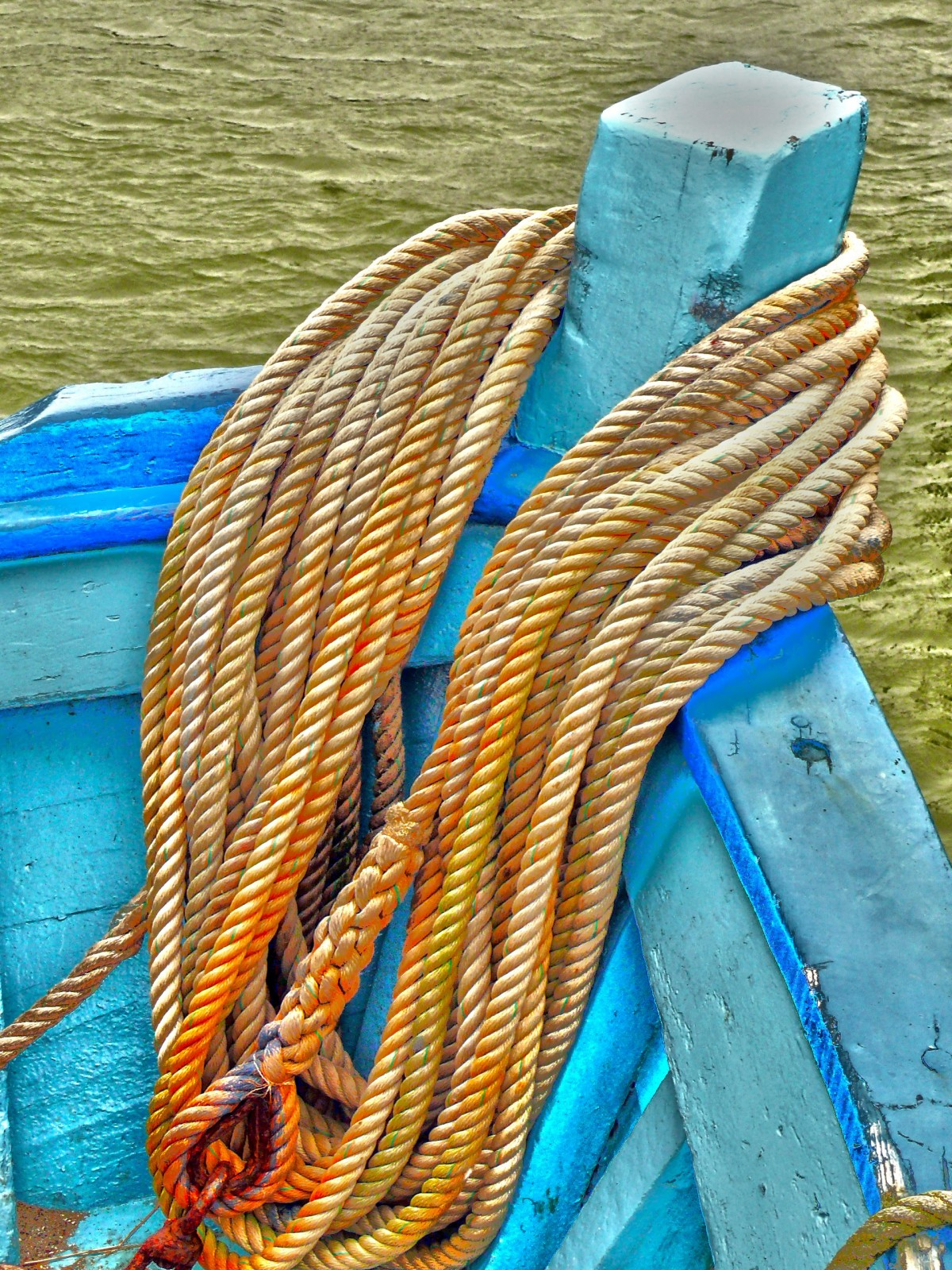 Cordage Marin Décoration Free Images Sea Rope France Color Blue Float