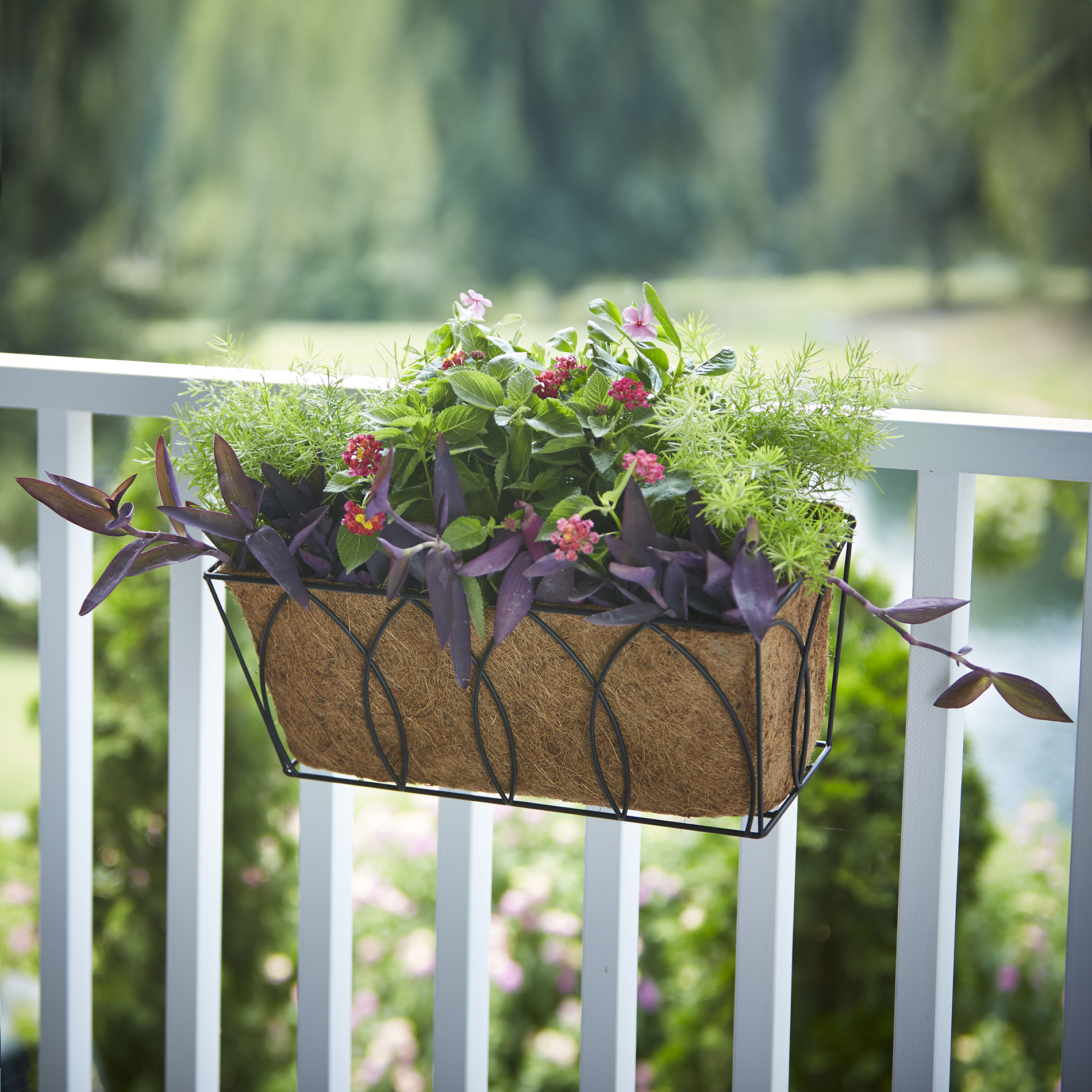 Outdoor Wall Hanging Planters Essential Garden Rectangular Wall Hanging Coco Planter