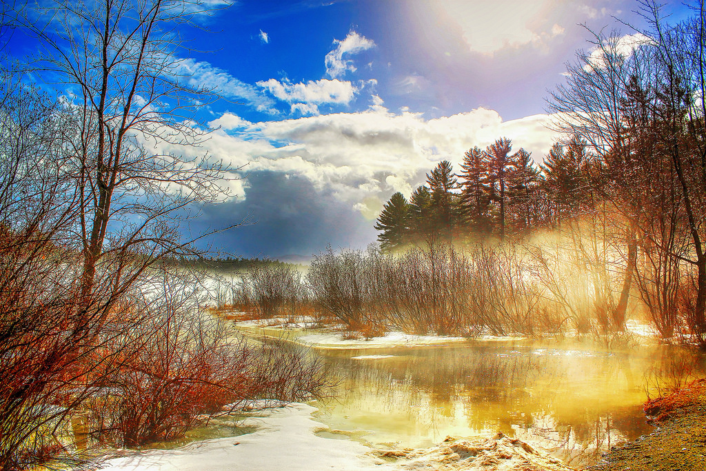 Background Wallpaper Hd Fall Fog Wallpaper Sunlight Trees Landscape Forest Lake