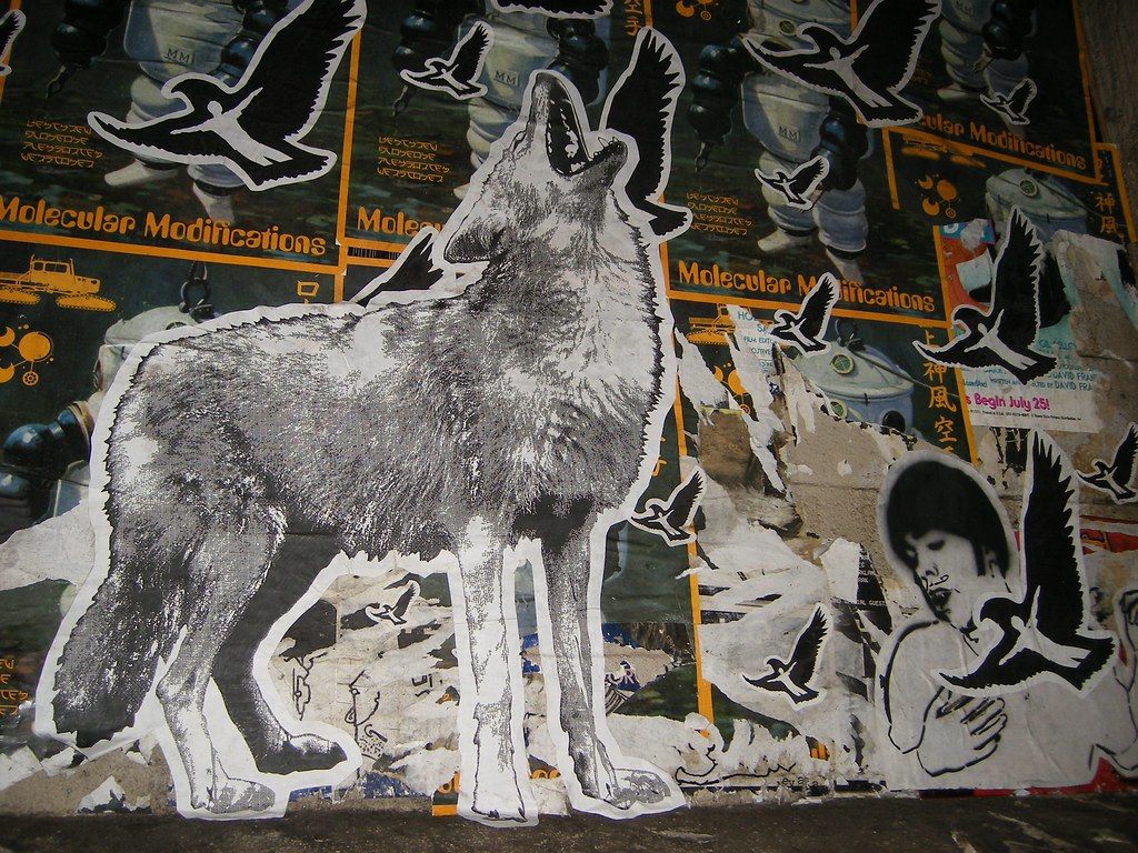 3d Angel Wallpaper Wolf And Boy With Manbird Graffiti Seattle Wolf And