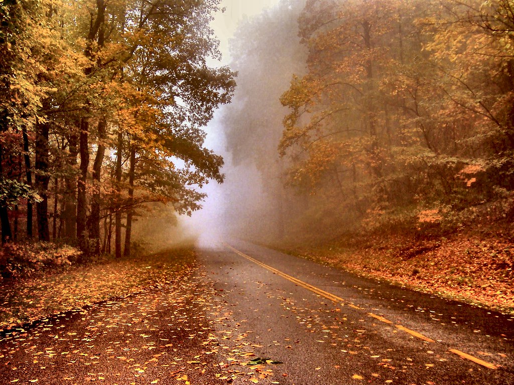 3d Fall Wallpaper Autumn Mist A Foggy Misty Autumn Day On The Blue Ridge