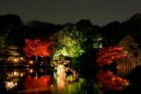Japanese garden at night #1 | * Yumi * | Flickr
