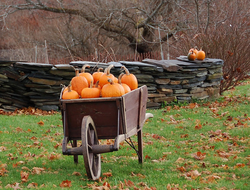 Fall Outdoor Decorations Wallpaper Fall Pumpkins A Load Of Pumpkins On The Northern Side Of