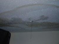 Ceiling Leak 002 | Ceiling leak caused by roof leak, due ...