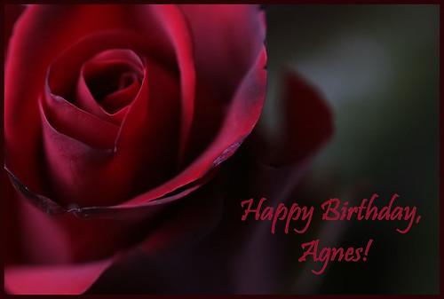 and happy birthday