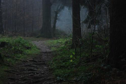 Dark Forest 3d Wallpaper The Entrance Alexander Boden Flickr