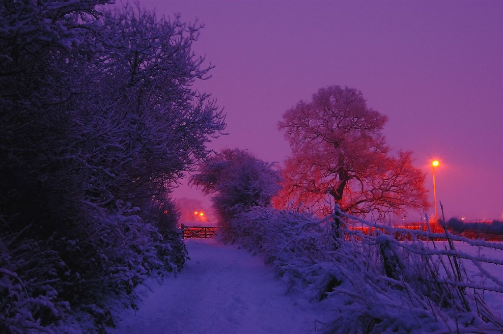 Cool Nature Wallpapers 3d Winter Lights The Sky And Tree Actually Were This Colour