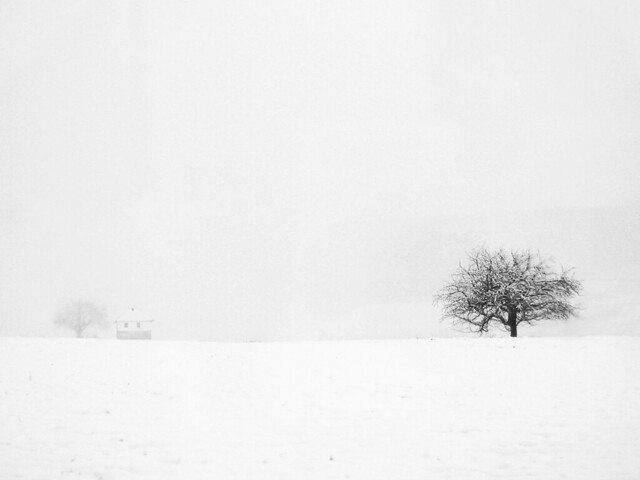 Free 3d Desktop Wallpapers Backgrounds Minimal Winter This Winter Was Minimal One Of Few Days