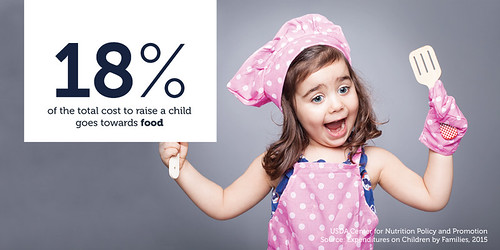 The Cost of Raising a Child USDA