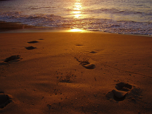 Wallpaper Of Love Quotes In English Sunset Footprints Beach Wcm1111 Flickr