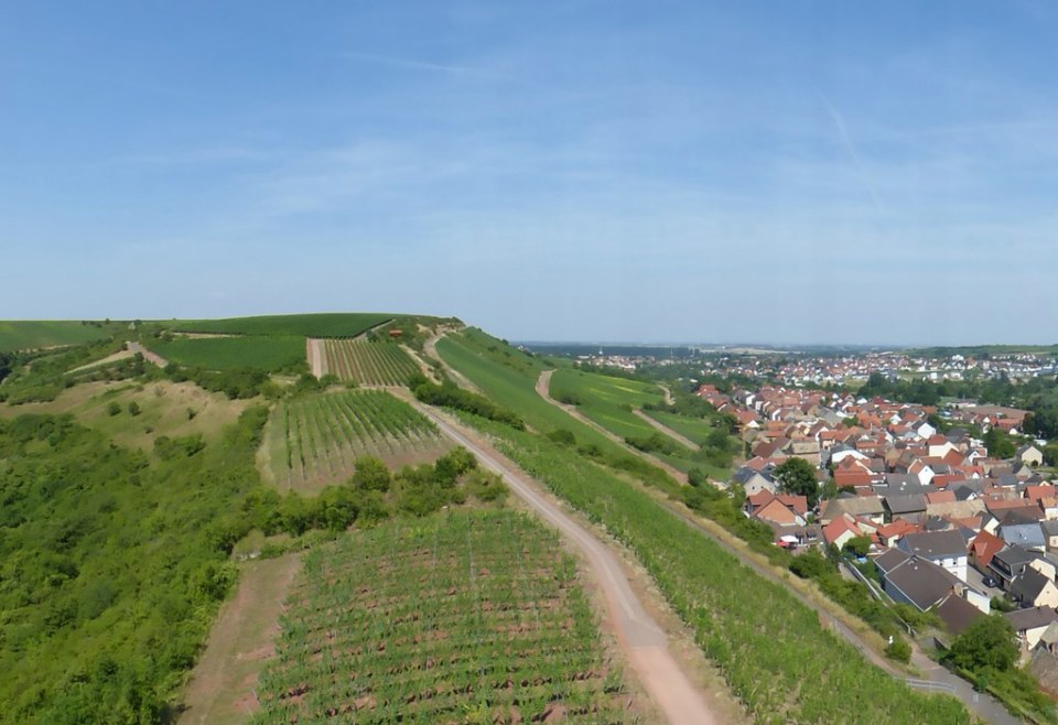 Blick von der Schwabsburg