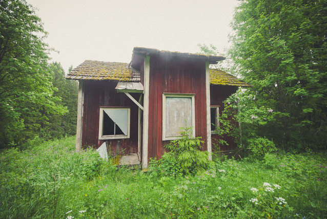 Abandoned cottage in the forest