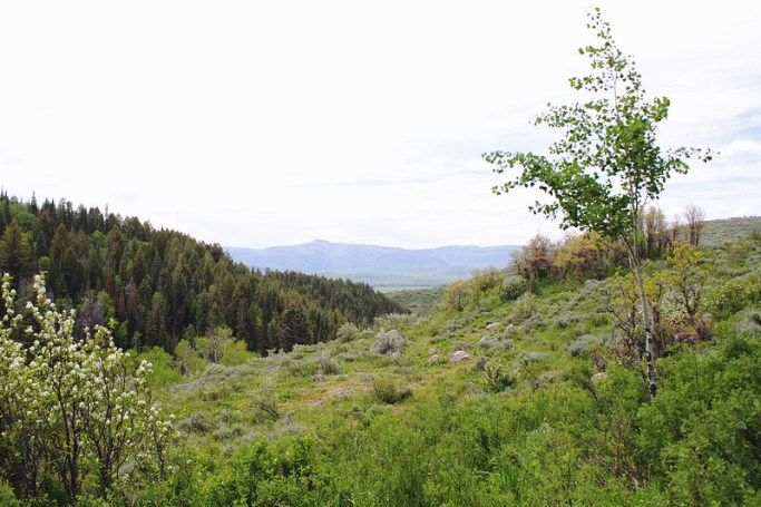 a weekend in Steamboat Springs