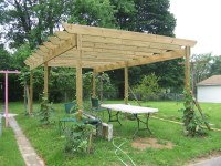 our finished grape pergola | just needs the diagonal ...