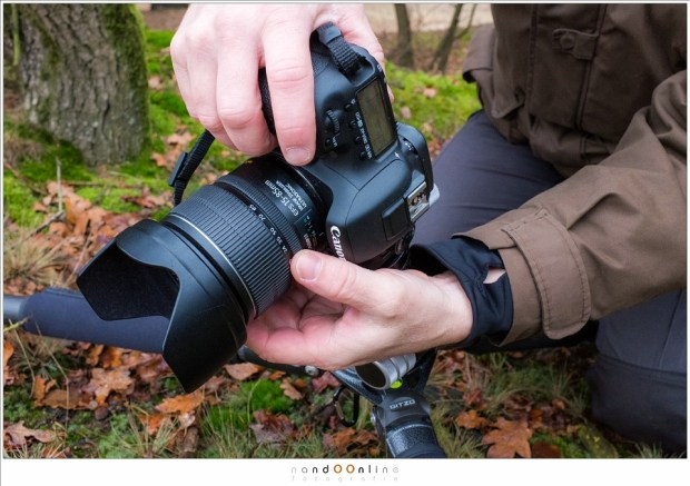 Druk de DOF knop in en draai met de scherpstelring vanaf de kortste instelafstand tot het verste object in beeld, waarop met live view ingezoomd is, scherp is. Zorg er wel voor dat de AF uit staat. (foto: Hetwie)