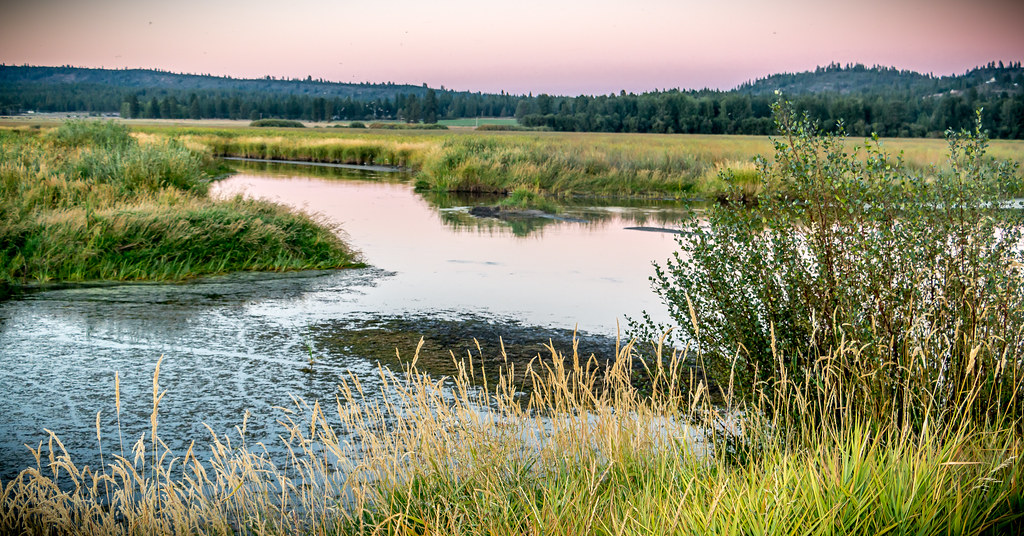 3d Home Hd Wallpaper Wood River Wetland Photo By Greg Shine Blm August 24