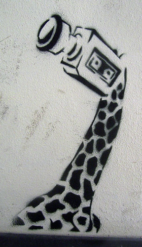 Pattern Wallpaper Hd Giraffe Camera Stencil Berlin Duncan C Flickr