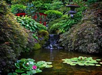 Japanese Gardens | Taken at the Japanese Garden section of ...