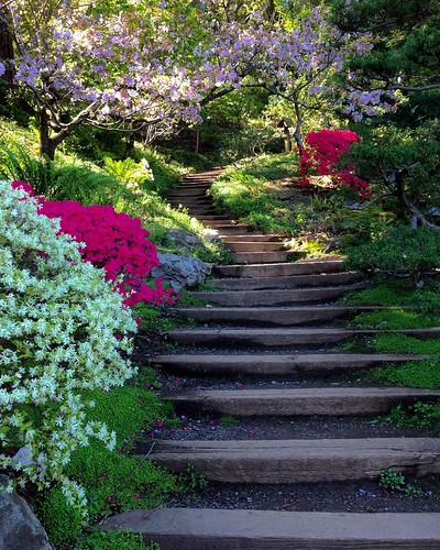 3d Wallpaper Ideas Pretty Garden Stairs Gardens And Flowers Have A Way Of