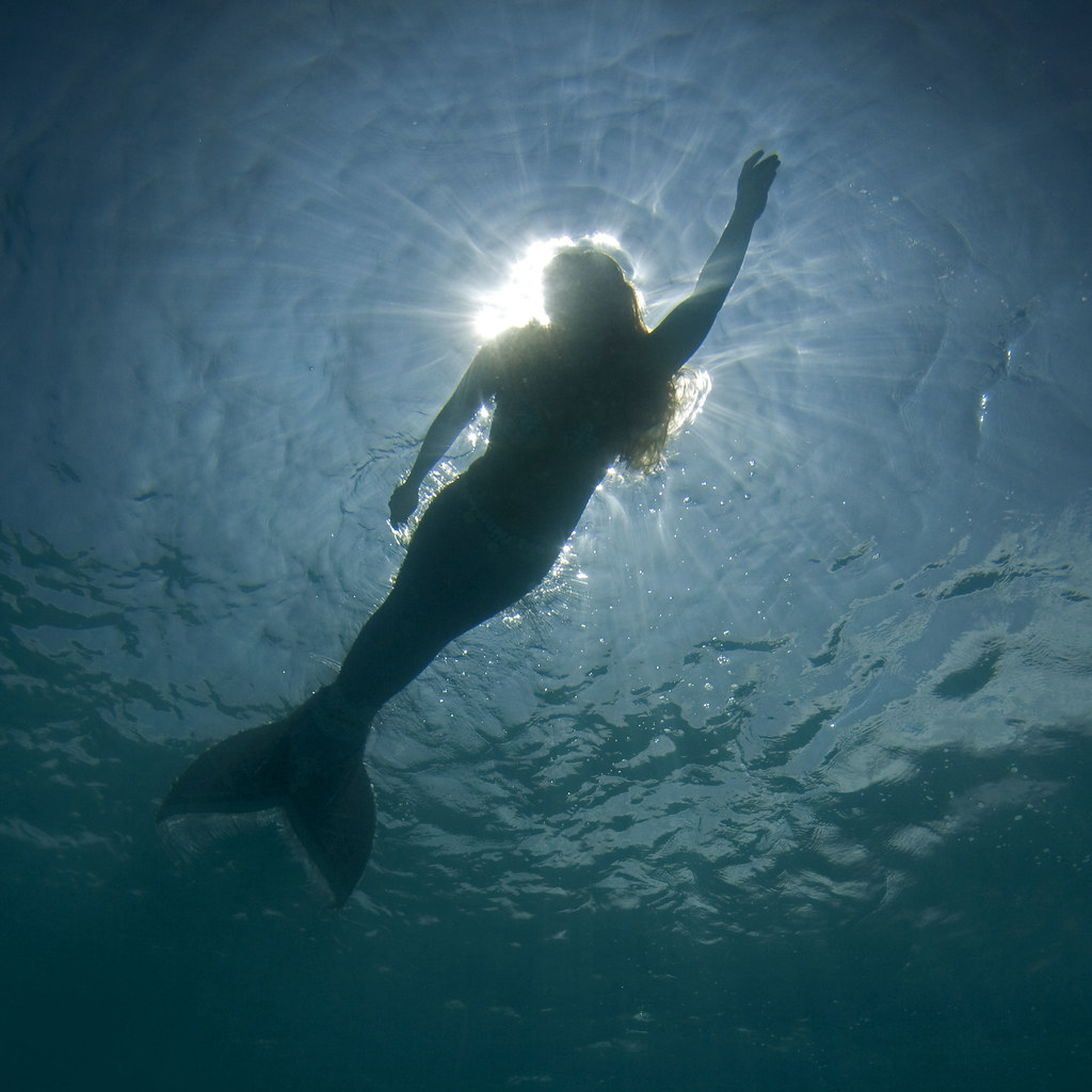 Animal Planet Wallpaper Hd Mermaid Had A Wonderful Shoot Today With Our Own Kona