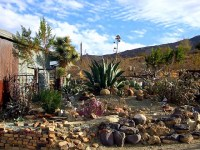 Cactus Rock Garden | This is the cactus rock garden at the ...