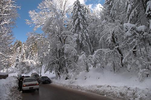 Falling Snow Animated Wallpaper Snowfall 2008 Murree Snowfall In Murree In January 2008