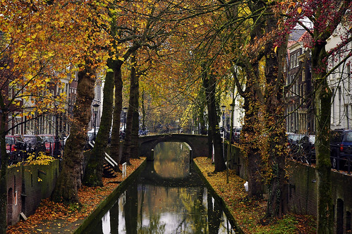 Netherlands Fall Wallpaper Autumn In The City Nieuwegracht Utrecht Holland
